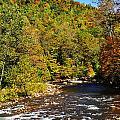 Fall Along Elk River by Thomas R Fletcher