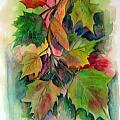 Fall Colors by John Smeulders