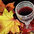 Fall Red Wine by Carlos Caetano