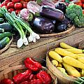 Farmers Market Summer Bounty by Kristin Elmquist