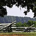 Fence At Appomattox by Teresa Mucha
