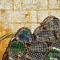 Fishing Traps by Carlos Caetano