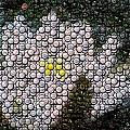 Flower Bottle Cap Mosaic by Paul Van Scott
