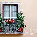 Flowery Balcony by Carlos Caetano