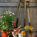 Garden Shed With Tools And Pots  by Sandra Cunningham