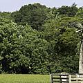 Grave Of Lafayette Meeks Appomattox Virginia by Teresa Mucha