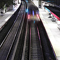 Great Neck Train Station by Stephen Walker