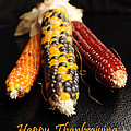 Happy Thanksgiving Card No.1 by Luke Moore