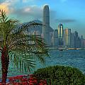Hong Kong Mornings by Bibhash Chaudhuri