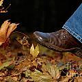 Kicking Fallen Autumn Leaves by Oleksiy Maksymenko