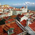 Lisbon Rooftops by Carlos Caetano