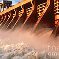 Mcnary Dam by DOE/Science Source