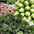 Mixed Vegetables. by Fernando Barozza