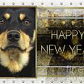 New Year - Golden Elegance Australian Kelpie by Renae Laughner