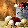 Onion Harvest by Sandra Cunningham