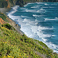 Pacific Coast Shoreline I by Steven Ainsworth