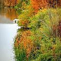 Prosser Autumn Docks by Carol Groenen