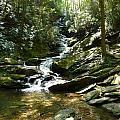 Roaring Creek Falls - II by Joel Deutsch