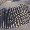 Sand Fence On The Beach In Destin by Marc Moritsch