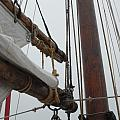 Ship 30 by Joyce StJames
