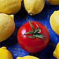 Single Tomato With Lemons by Garry Gay