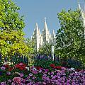 Slc Temple Flowers by La Rae  Roberts