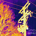 Thermogram Of Electrical Wires by Ted Kinsman