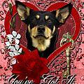 Valentines - Key To My Heart Australian Kelpie by Renae Laughner