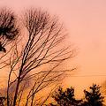 Winter Sunrise by Laurie Breton