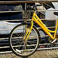 Yellow Bicycle by Carlos Caetano