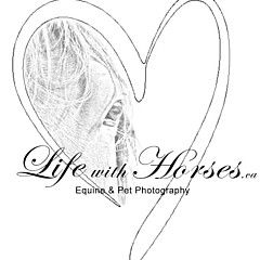 Life With Horses - Fine Artist