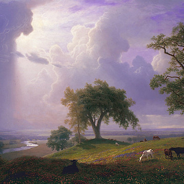 Albert Bierstadt Gallery Collection
