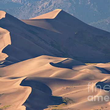 The Great Sand Dunes Collection