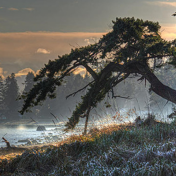 2016 Calendar Photos - Vancouver Island Scenes Collection