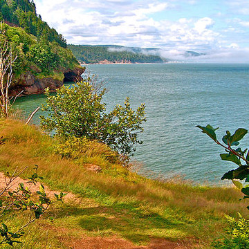 CANADA NB Bay of Fundy National Park Collection