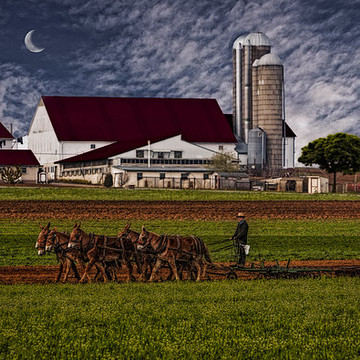 Country Farms and Barns Collection
