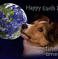 Earth Day Greeting Cards Collection