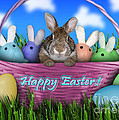 Easter Greeting Cards Collection