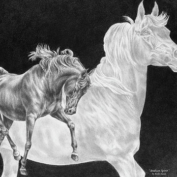 Horse Art in black and white