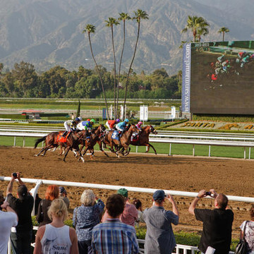 Horseracing at Santa Anita Park  Collection