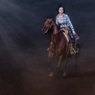 Horses & Western Details Collection