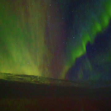 Iceland and the Northern Lights Sea Birds  North Atlantic Nova Scotia Boston Collection