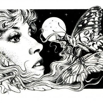 Ink drawings inspired by Stevie Nicks Collection
