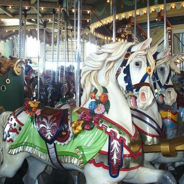 Life is Like a Carousel Collection