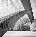 Natchez Trace Bridge Infrared Study Collection