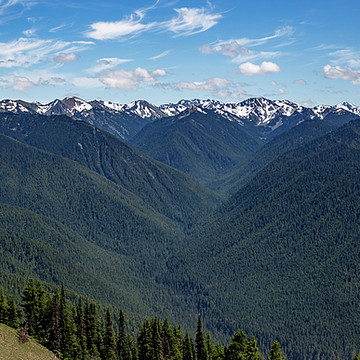 Olympic National Park Collection