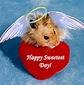 Sweetest Day Greeting Cards Collection