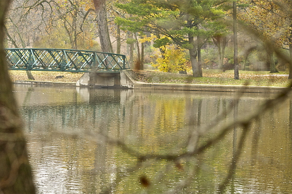 Bridge Photograph -  Bridge Revealed by Robert Joseph