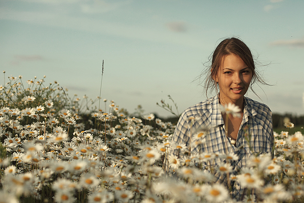Daisies Photograph -  Chamomile by Vadim Grabbe