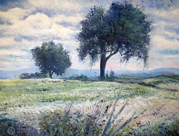 Italy Painting -   Olive Trees At Monte Cardeto Italy 2009  by Enver Larney
